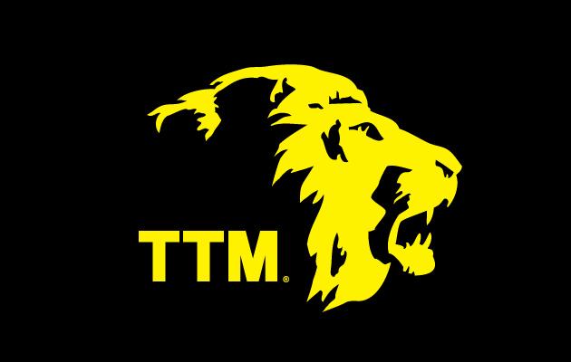 TTM-Security_thumb